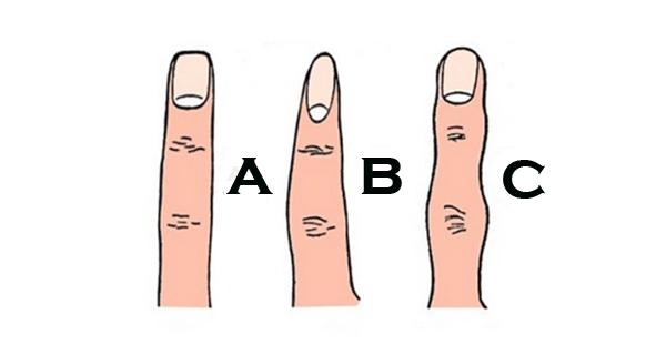 a ponta dos seus dedos